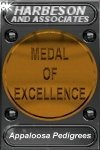 Harbeson and Associates Bronze Medal of Excellence